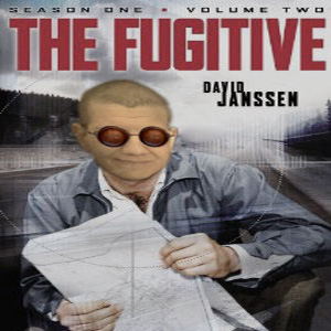 The Fugitive (2014)